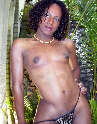 This tranny porn babe is eager to get naked and do nasty things, ...
